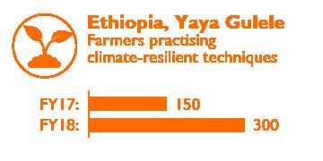 Ethiopia Impact